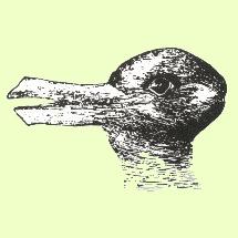 anatra o coniglio