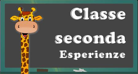 classe seconda2016-2017